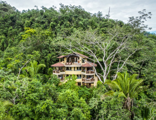 Sleeping Giant Rainforest Lodge – 3 Night Specials from $899 – Belmopan